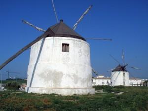Molinos_de_viento_verjer
